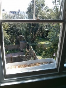 Window Glass Replacement Addiscombe CR0
